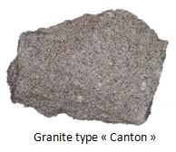 Type canton