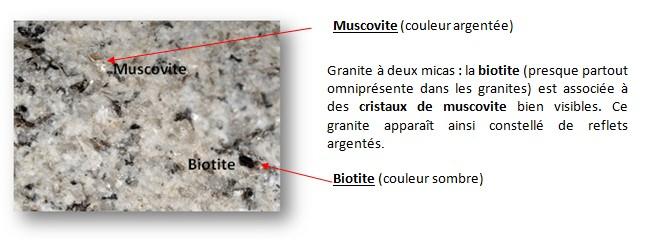 biotite et muscovite expli